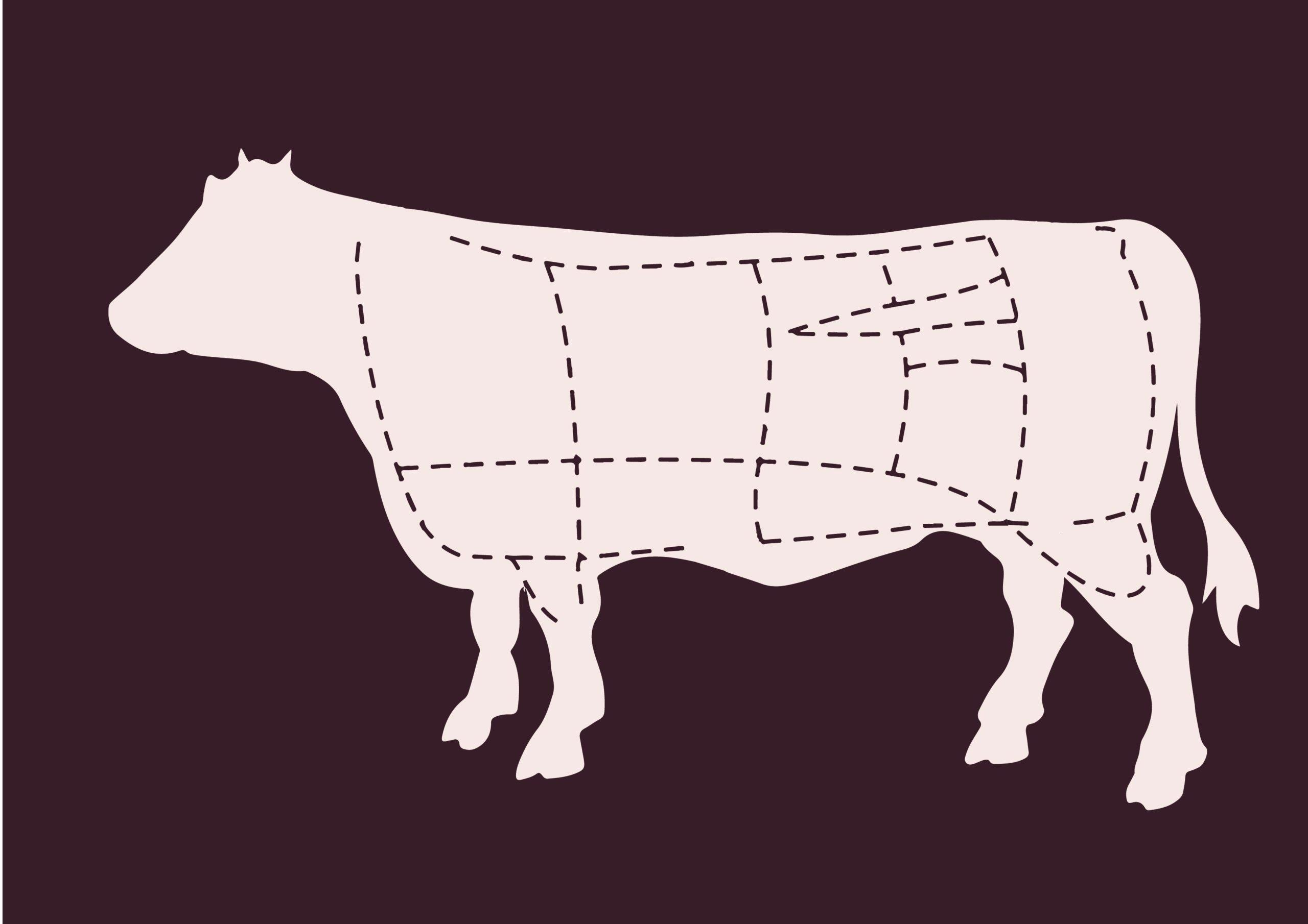 rundvleespakket koop een koe