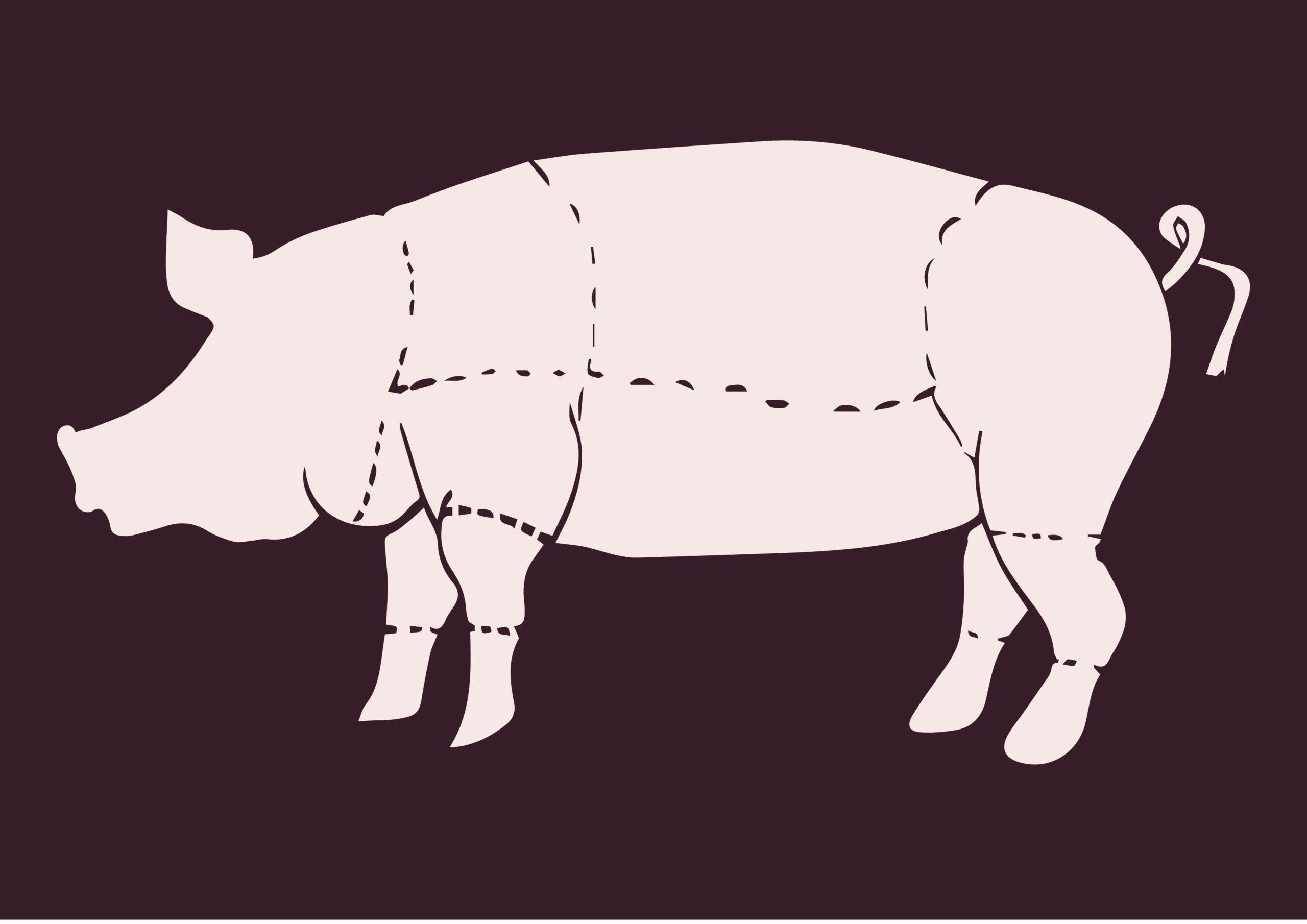 varkensvlees vleespakket koop een varken